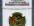 2002年中国民间神话故事第(2)组-夸父追日1/2盎司彩金币(原盒、带证书、NGC PF69)
